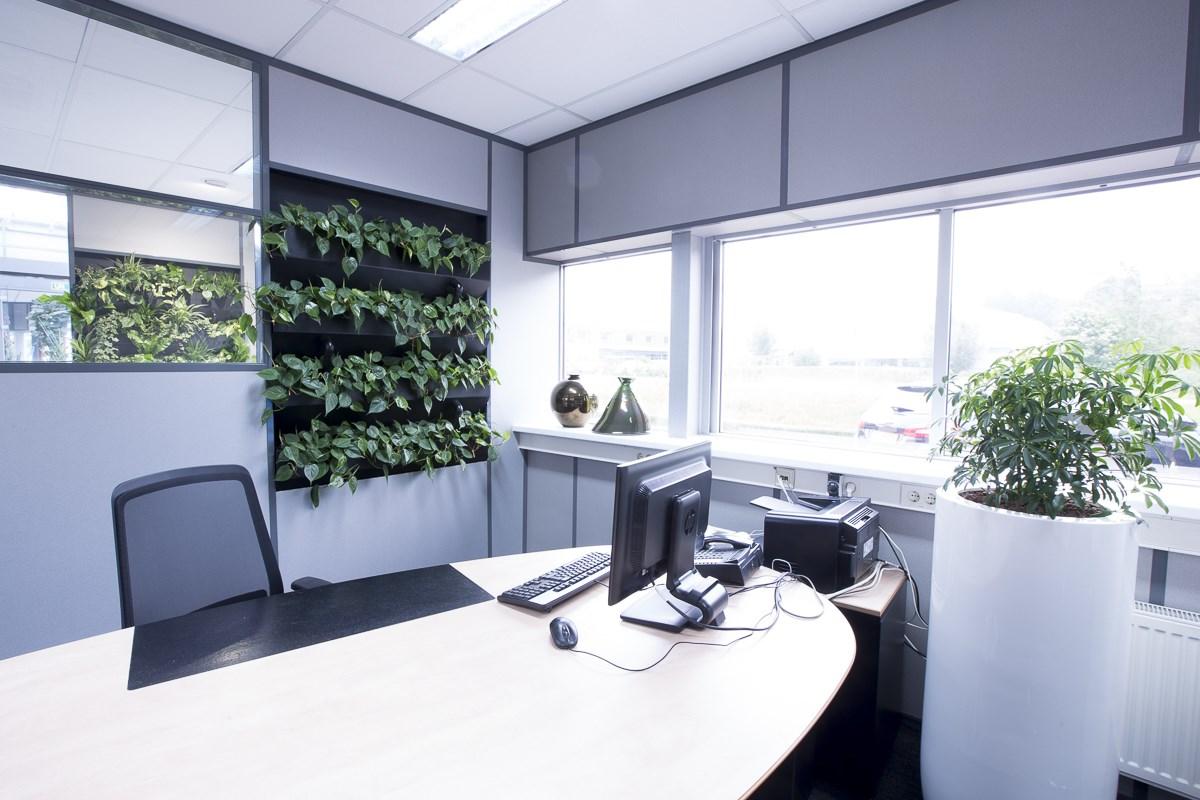 Spaces4You groen op kantoor